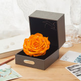 Constellation Preserved Rose Flowers Gift for Christmas