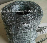 Professional Factory Produce Galvanized or PVC Barbed Wire