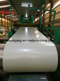 China Products/Suppliers. Color Coated Galvanized Steel Coil with 30 Years Experience