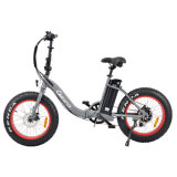 Customized Cheap 1000W Electric Motorcycle Bikes