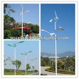 Export Single Lingting Pole