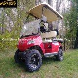 Club Car 2 Seater Electric Golf Car with Aluminium Chassis