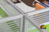 New Style High Quality Office Furniture Partition Workstation