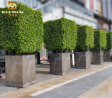Bespoke Stainless Steel Outdoor Plant Pots