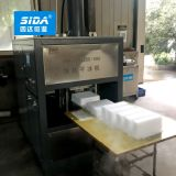 Sida Fully Auto Dry Ice Production Line with Dry Ice Pellets Maker and Dry Ice Block Making Packing Machine