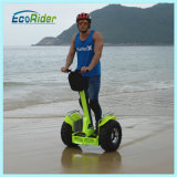 New Model Fat Tire Electric Self Balancing Scooter