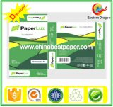 Virgin Wood Pulp Copy Paper (70g-80g)/A4 paper