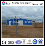 Prefabricated Light Steel Structure Broiler House