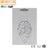 Amber/ Green/ Clear Crystal Pendant Lamp / Wholesale Bella Chandelier Special Shape