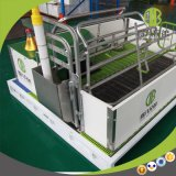 Wholesale Galvanized Farrowing Crate Certified Pig Farming Equipment for Sale