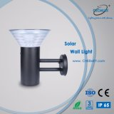 LED Outdoor Solar Lawn Garden Lighting for Wall