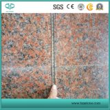 Wholesale Red Granite/Maple Red/G562/Polished Slabs/ Tiles