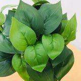 Film Leaf Pig Heart Leaf 9 Fork Bundle Artificial Plant, Beautiful Design, Cheap and Fine.
