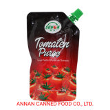 100% Purity Tomato Paste Self-Standing Pouch with Cap OEM Brand