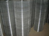 Hot-Dipped Galvanized Rust-Proof Welded Wire Mesh Roll Price