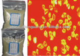 Synthetic Diamond Micro Powder