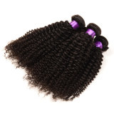 Afro Kinky Curly Human Hair Extension Weave
