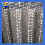 Specialty & Custom Weld Wire Mesh Products Stainless Steel