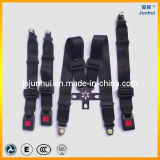 Hot Sale Fia 5 Point Racing Seat Belt (JH-Lee-5P002)