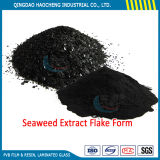 Competitive Price Soluble Powder Seaweed Extract for Plant Nutrient Food