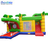 Inflatable Castle/Inflatable Bouncy House/Bouncer Castle Inflatable
