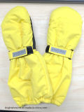 Winter Sport Skiing Gloves, and for Riding and Fishing