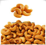 Manufacturer Natural Cashew/ Anacardium Occidentale 10: 1 Extract Powder