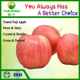 2018 Fresh Fruit FUJI Apple Yantai FUJI From China with Good Price