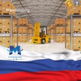 Professional Logistics Service From China to Russia/St Petersburg/Moscow/Vladivostok
