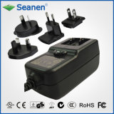 24W Multi-Pin Power Supply (RoHS, efficiency level VI)