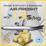Promotion Price Door to Door Shipping Logistics to New Zealand
