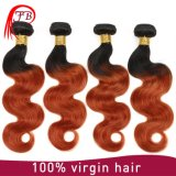 Chinese Two Tone Human Hair Body Wave Hair Extension