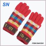 Wholesale Fashion Knitted Funky Winter Warm Jacquard Acrylic Glove