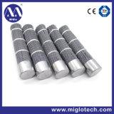 Customized Industrial Brush Disc Brush for Deburring Polishing (dB-200011)