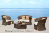 Modern Wicker/Rattan Round Sofa Wholesale Round Furniture (TG-082)