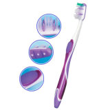 Cheap Custom Adult Toothbrush with Nylon Bristles to Wal-Mart