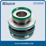 Ts Xe Mechanical Seal for Flygt Pump