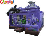 Inflatable Bouncer Combo/Inflatable Castle with Slide Bb141