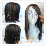 Micro Twist Braid Wig Synthetic Hair Lace Front Wigs for Black Women