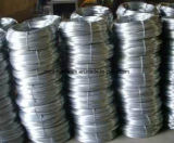 Hot-Dipped Galvanized Iron Wire with Best Price/ Binding Wire in Rolls China Supplier