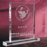 Custom Clear Acryic Crystal Award (BTR-I 7016)