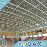 Formaldehyde-Free Gymnasium Ceiling Tile Building Materials