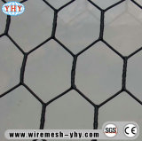 PVC Coated Hexagonal Mesh for Crab