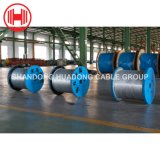 China Galvanized Iron Wire and Black Annealed Wire