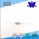 Rhos Approval Thermal Fuse Wirewound Resistor