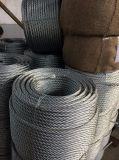 Galvanized Stee Wire Rope 6*12+7FC