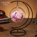 Hot Sale Preserved Fresh Flower for Home Decoration
