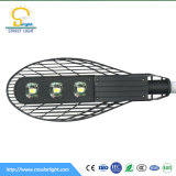 IES RoHS CE IEC Certified Outdoor LED Street Light COB Type LED Street Lamp