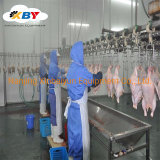 Factory Sale Chicken Slaughter Line Poultry Processing Equipment