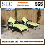 Chaise Lounge/ Outdoor Lounge/Garden Lounge Set (SC-A7315)